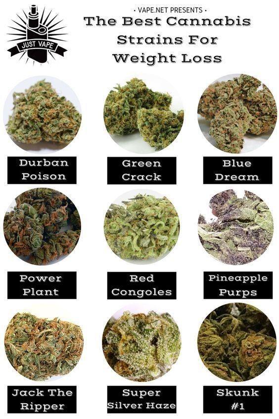 cannabis perte de poids
