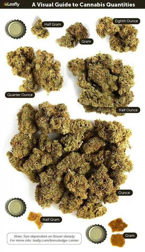 cannabis quantites